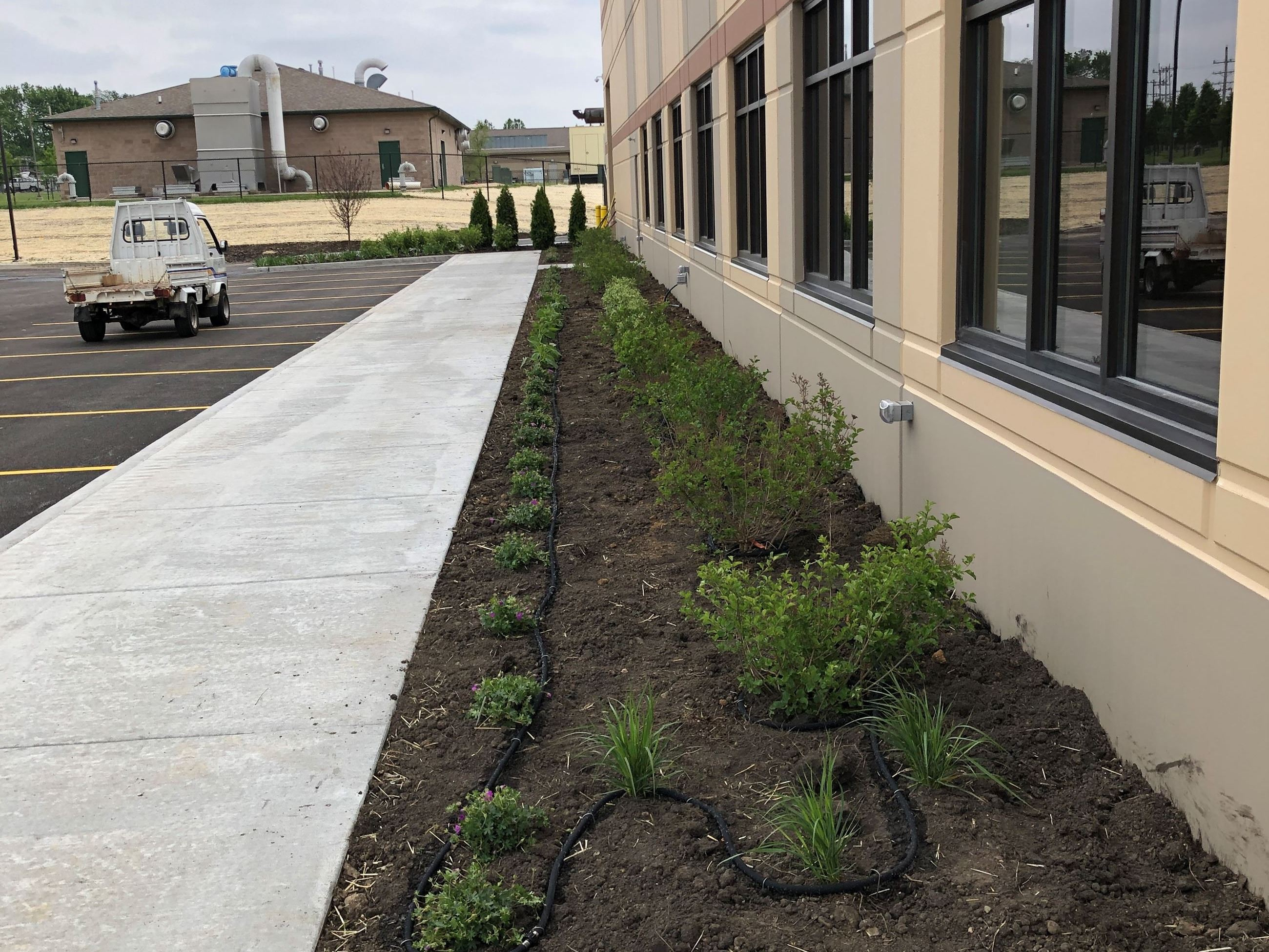 New Plantings at Municipal Center